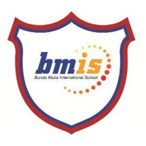 logo bmis team_2